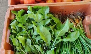 Producción entregó verdura fresca al Hospital